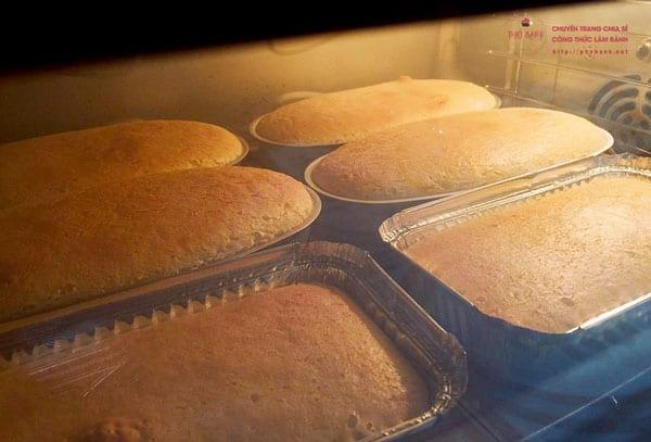 Hướng dẫn công thức làm bánh bông lan phô mai Nhật Bản chuẩn ngon